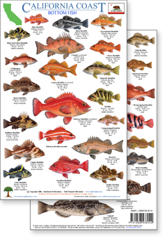 California coast pacific marine wildlife field guides for Oregon game and fish